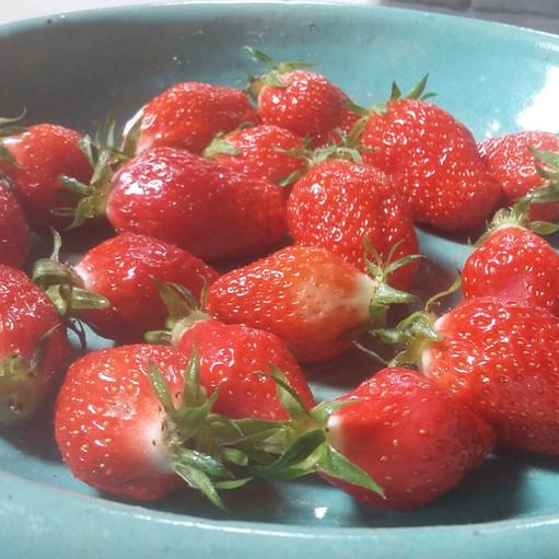 Des fraises du jardin O Petit BOnheur