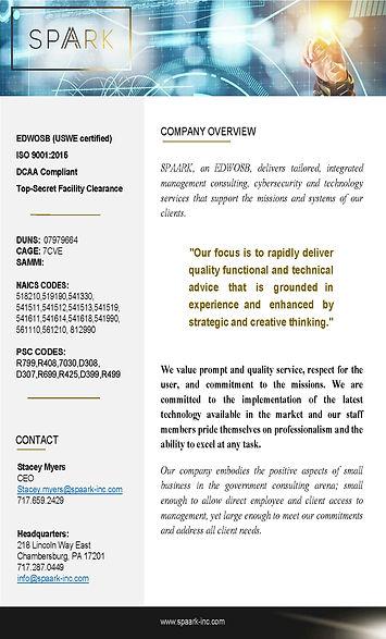 SPAARK Capabilites_12.23.2020_Page_1.jpg