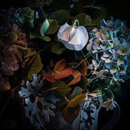 Morning light. Bouquet with hydrangeas (fragment)
