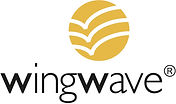 wingwave-coaching, Emotionscoaching