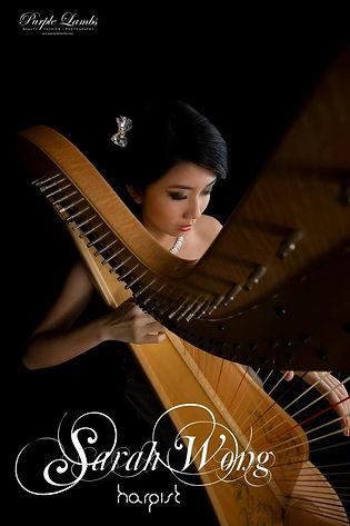 Singapore Wedding Live Band, Wedding Emcee & Host, gclivemusic, glittering carousel, wedding singers, wedding musicians, Live String Music, Live Instrumental Band, Jazz Band, Harpist
