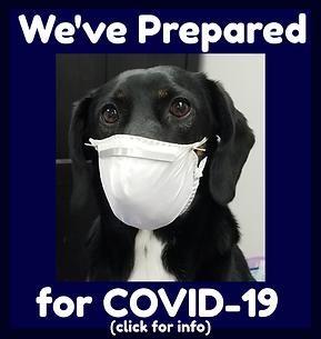 COVID-19 prep2.png