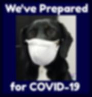 COVID-19 prep.png
