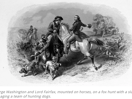 George Washington: Founding Father—And Passionate Dog Breeder