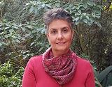 Inglês Jurídico Descmplicando - Raquel Schaitza