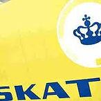 skat i dk.jpg