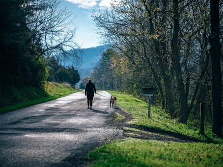How walking benefits your lower back