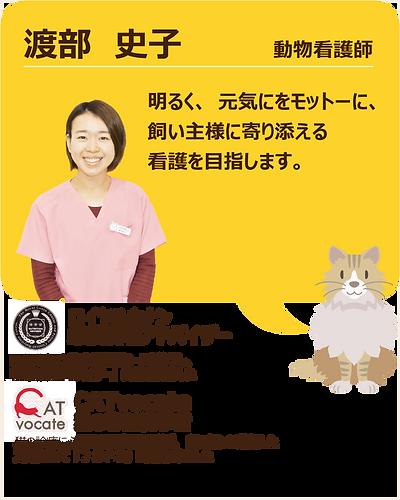 スタッフ紹介_渡部05.png