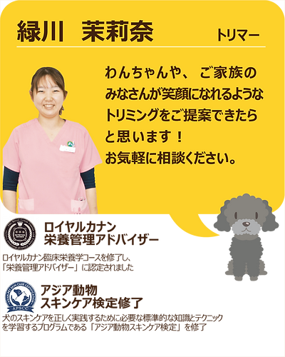 スタッフ紹介_緑川03.png