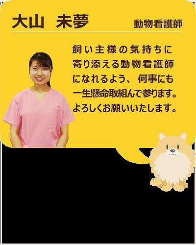 スタッフ紹介_大山02.png