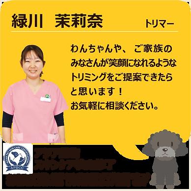 スタッフ紹介_緑川02.png