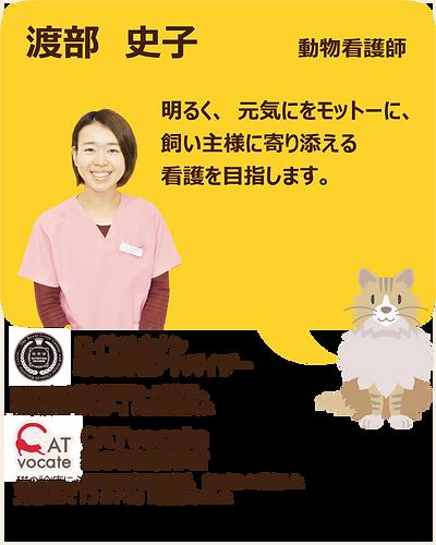 スタッフ紹介_渡部04.png