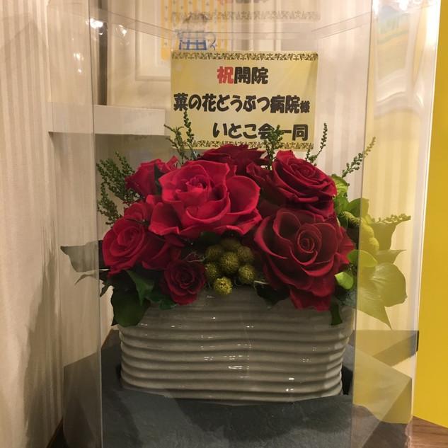 内覧会 お祝い 内田 いとこ一同