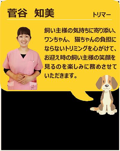 スタッフ紹介_菅谷01.png