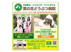 4.リビング栃木.png