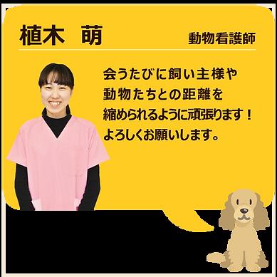 スタッフ紹介_植木01.png