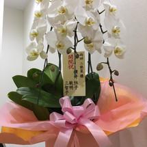 内覧会 お祝い 横井恒子様・敏明様・三智子様