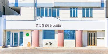病院_正面.png