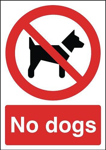 210x148mm No Dogs - Rigid