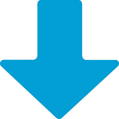 """2"""" X 5"""" Blue Floor Arrows Pack of 100"""