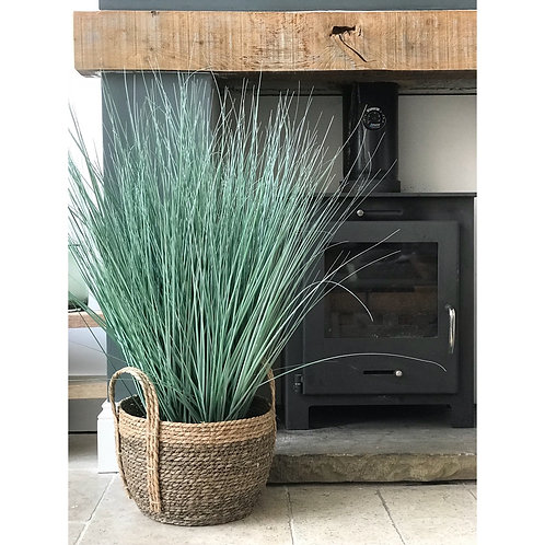 DUSKY GREEN LONG POTTED GRASS