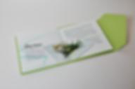 Herb Pocket Handbook Information book editorial design layout and book design by Patricia Maldonado for Green Flamingo Design