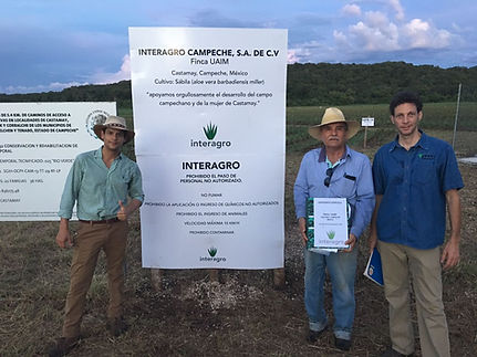 InterAgro family run aloe vera farm in the Yucatan Peninsula of Mexico