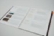 Architectural proposal and portfolio for Gruzen Samton editorial design layout by Patricia Maldonado