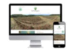 InterAgro aloe vera supplier website design by Green Flamingo in Palm Beach, Florida