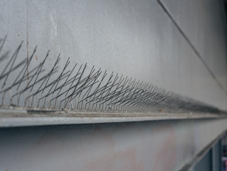 Pest Proofing on Roller Shutter Door