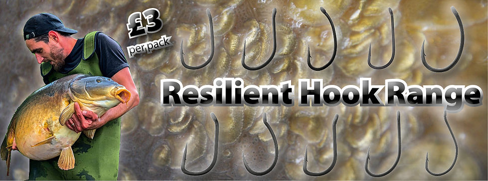 Resilient Cover Large.jpg