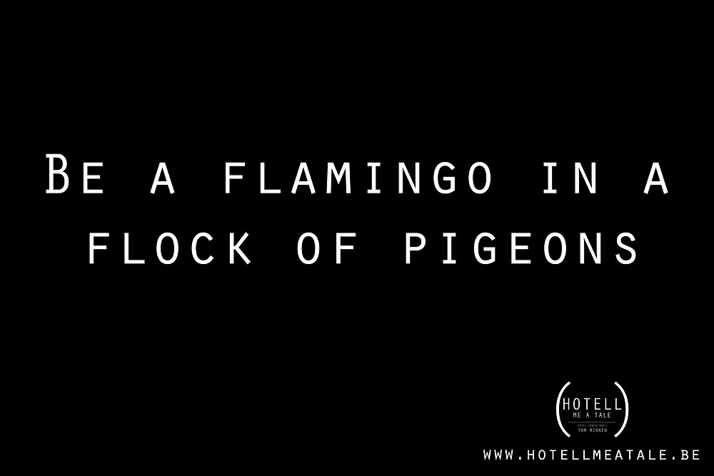 Quote: Be a flamingo in a flock of pigeons