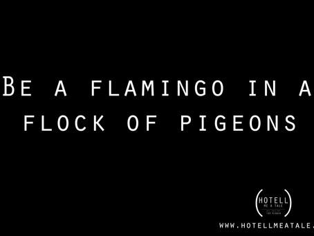 Be a flamingo!