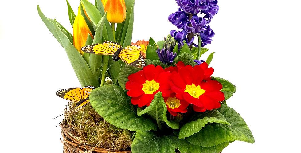 Frühlingsschale bunt, rund