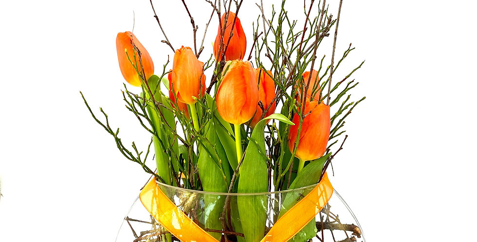 Tulpenschale orange