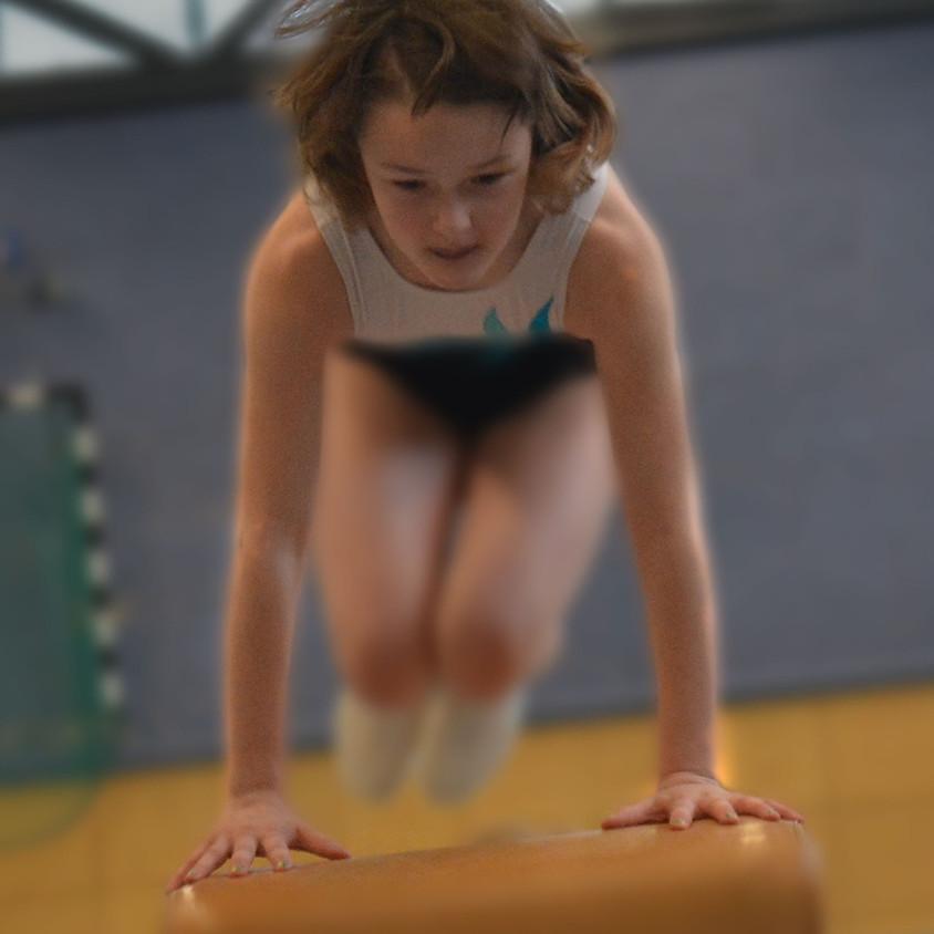 Gymnastique aux agrès - CE2 au CM2 - Niveau avancé
