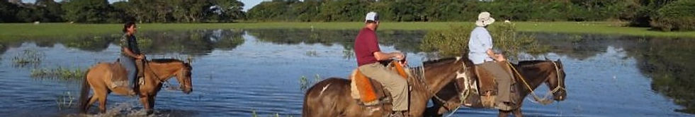 Horseback riding in one of several different activities  in Pantanal