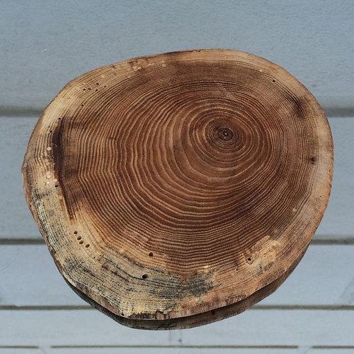 Wood coaster - large