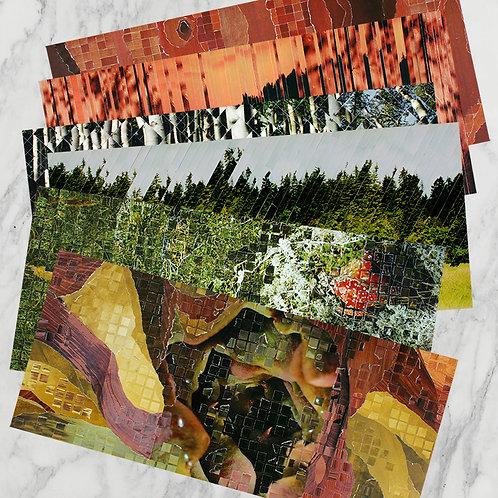"""""""ö & skog"""" ArtCard 6-pack"""