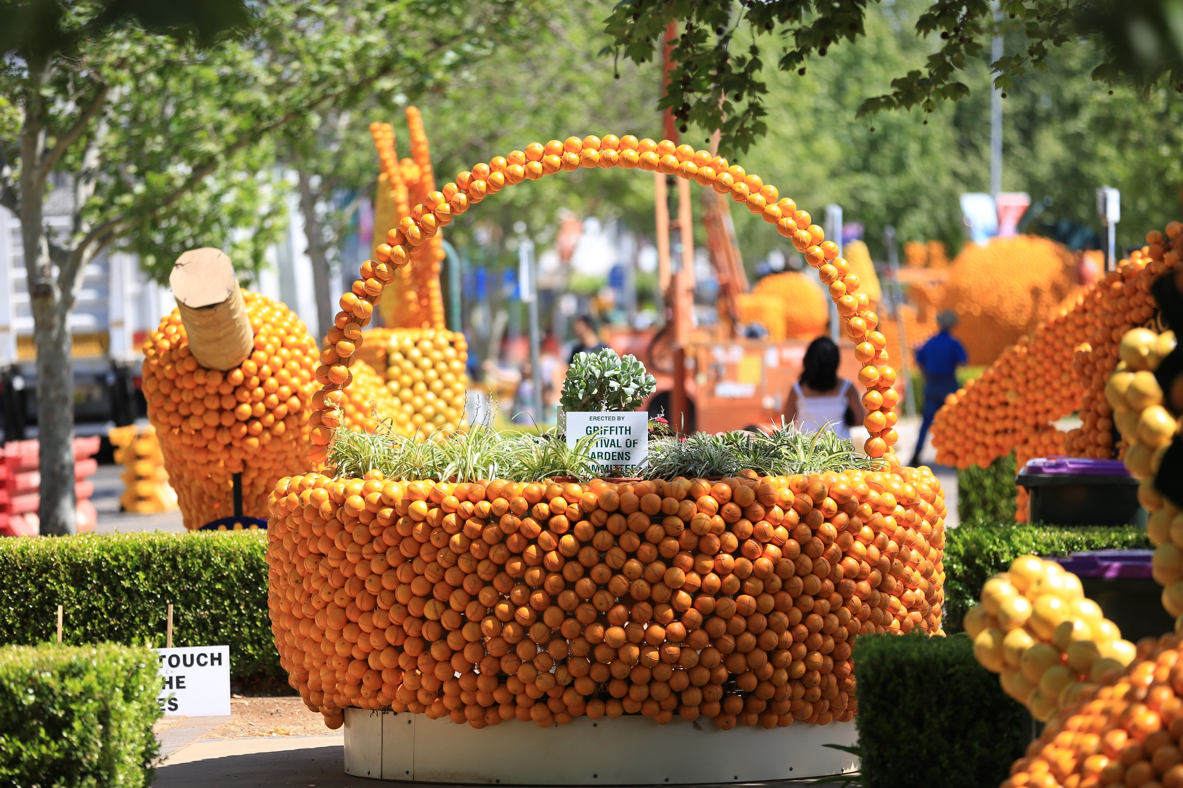 2015 Citrus Sculptures_Basket