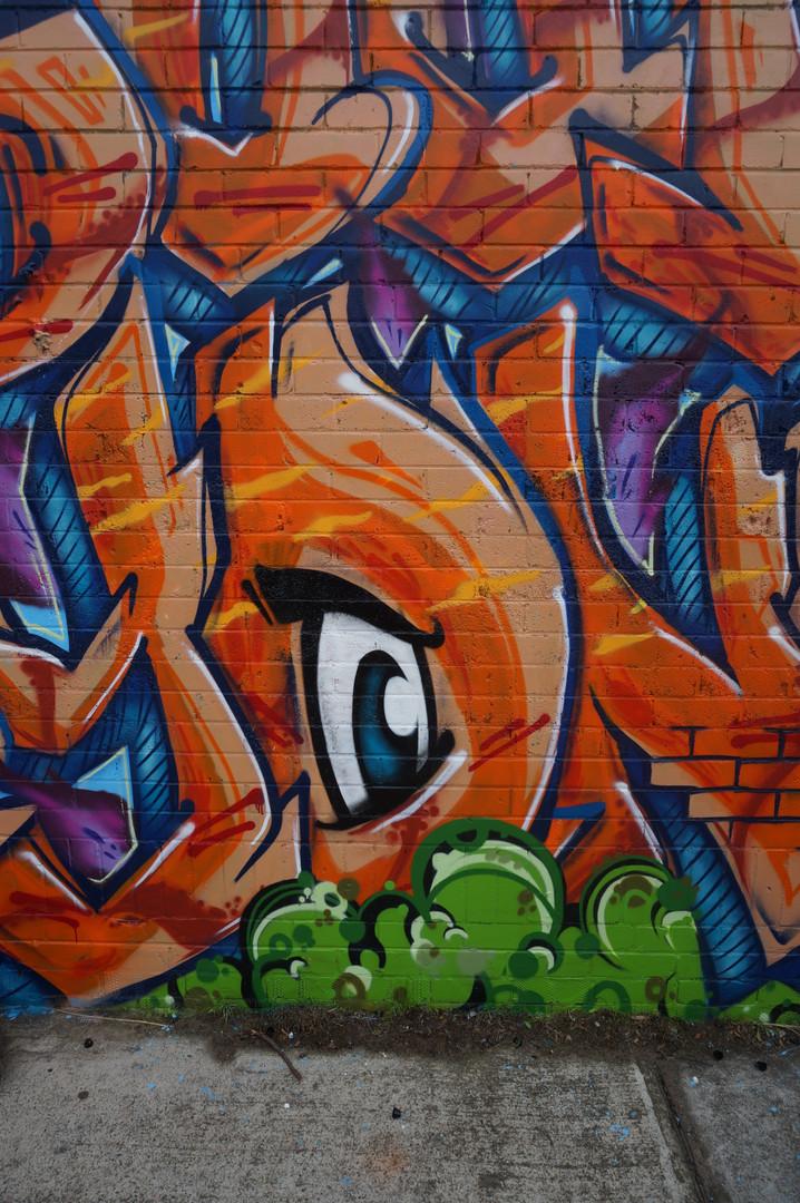 Graffit Fox, Graffiti Artist Sydney, Street Artist, Graffiti Mural