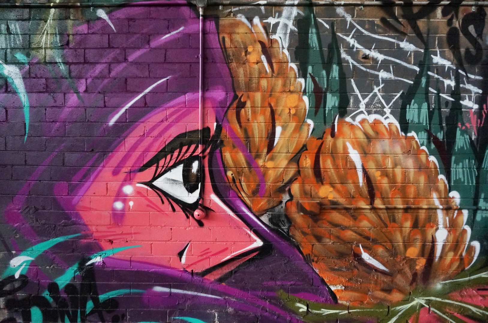 Graffiti, Sydney, Spray Paint, Mural, Street Art, Hugo Tees