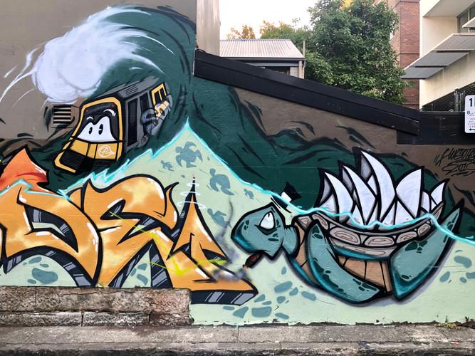 Turtle, Graffiti, Street Art Mural, Hugo Tees