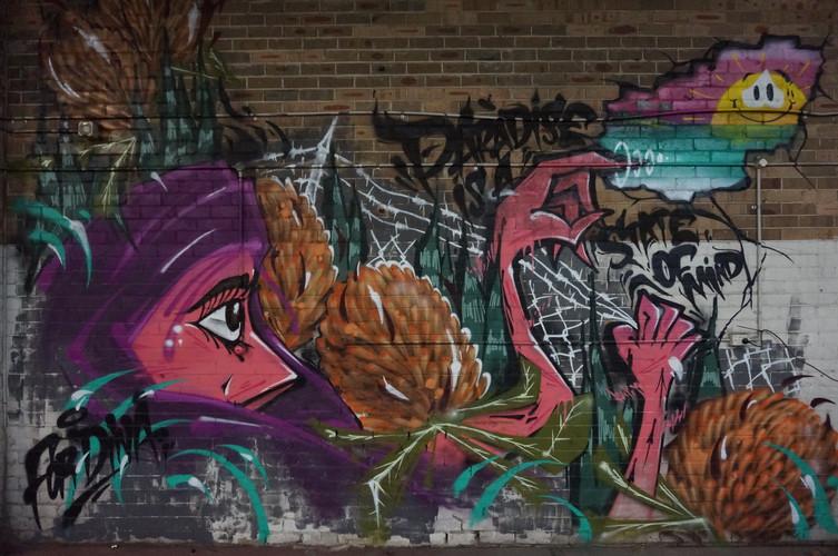 Graffiti, Sydney, Spray Paint, Mural, Street Art, Hugo Tees