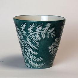 NS Fern cup.jpg