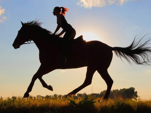 Take the Reins: Your Health Matters