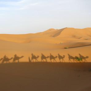 Camel Trekking the Moroccan Erg