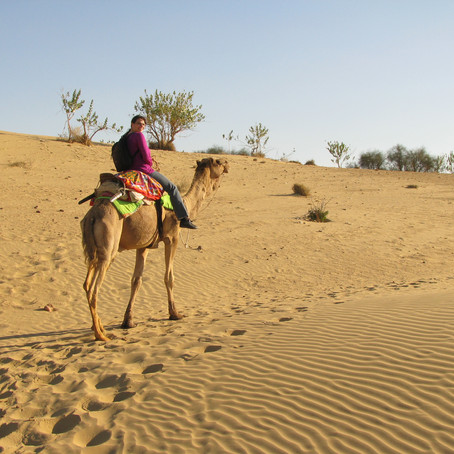 Riding Camels in the Thar Desert