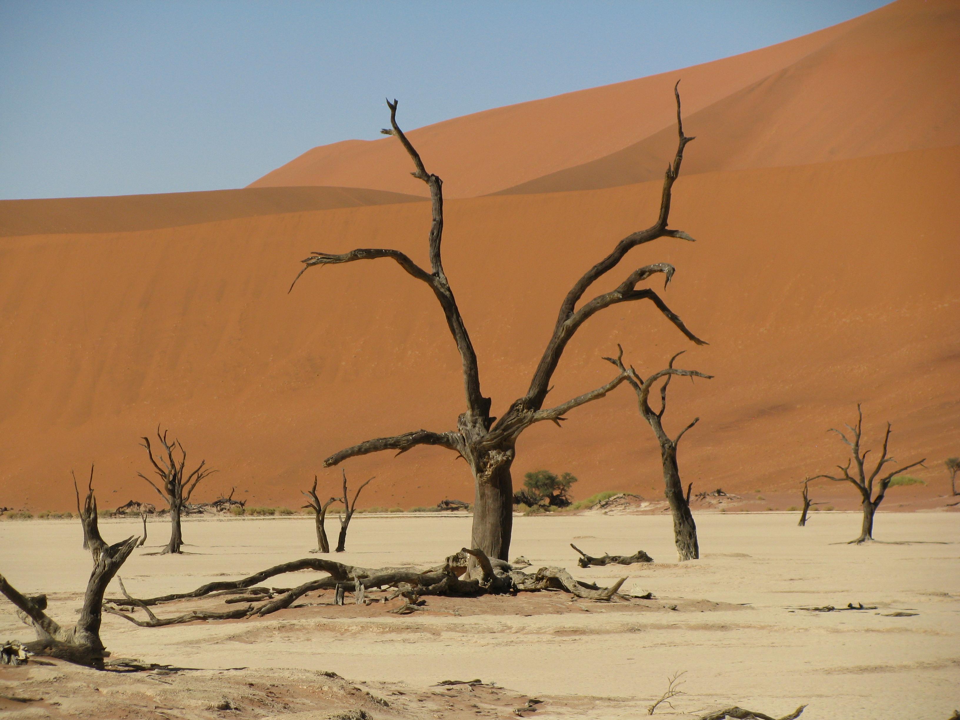 Sossuslvei, Namibia