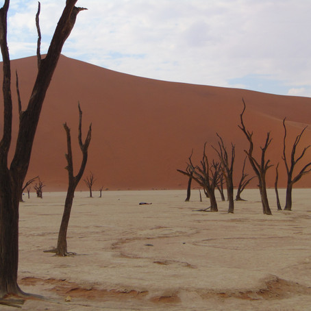 The Iconic Sossusvlei, Namibia